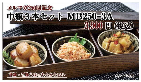 中瓶セット MB250-3A 3,900円(税込)