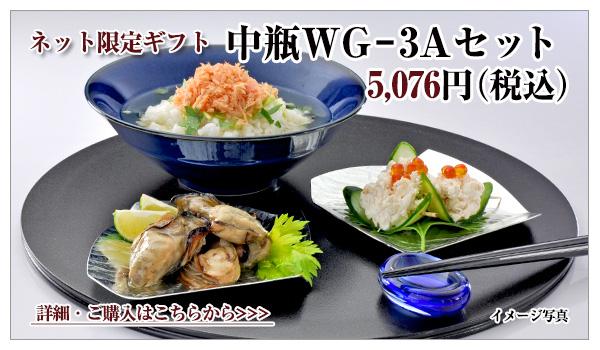 中瓶WG−3Aセット 5,076円(税込)
