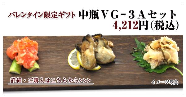 中瓶 VG-3Aセット 4,212円(税込)