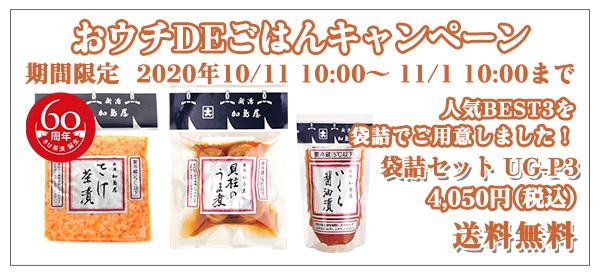 おウチDEごはんキャンペーン 袋詰セット UG-P3 4,050円(税込)送料無料
