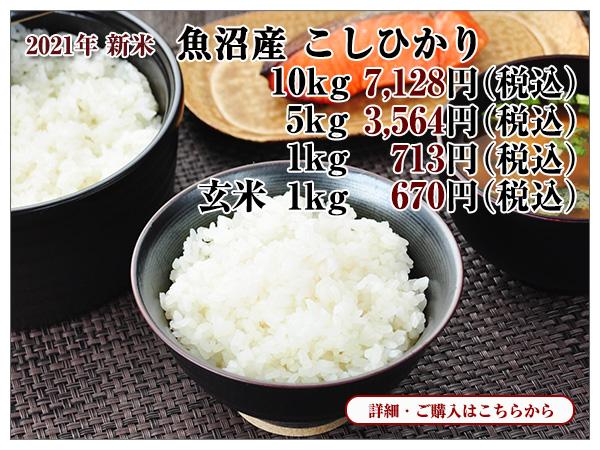 新米 魚沼産こしひかり・玄米のご紹介